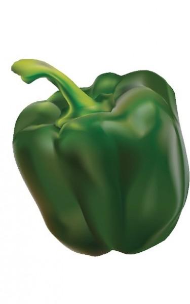 Paprika grün 500gr